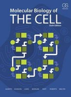 Molecular Biology of the Cell | 9780815344643